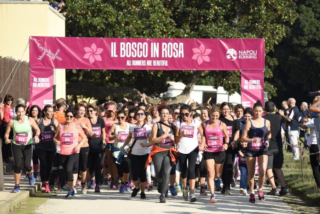 Bosco in Rosa, corri tra i capolavori di Capodimonte