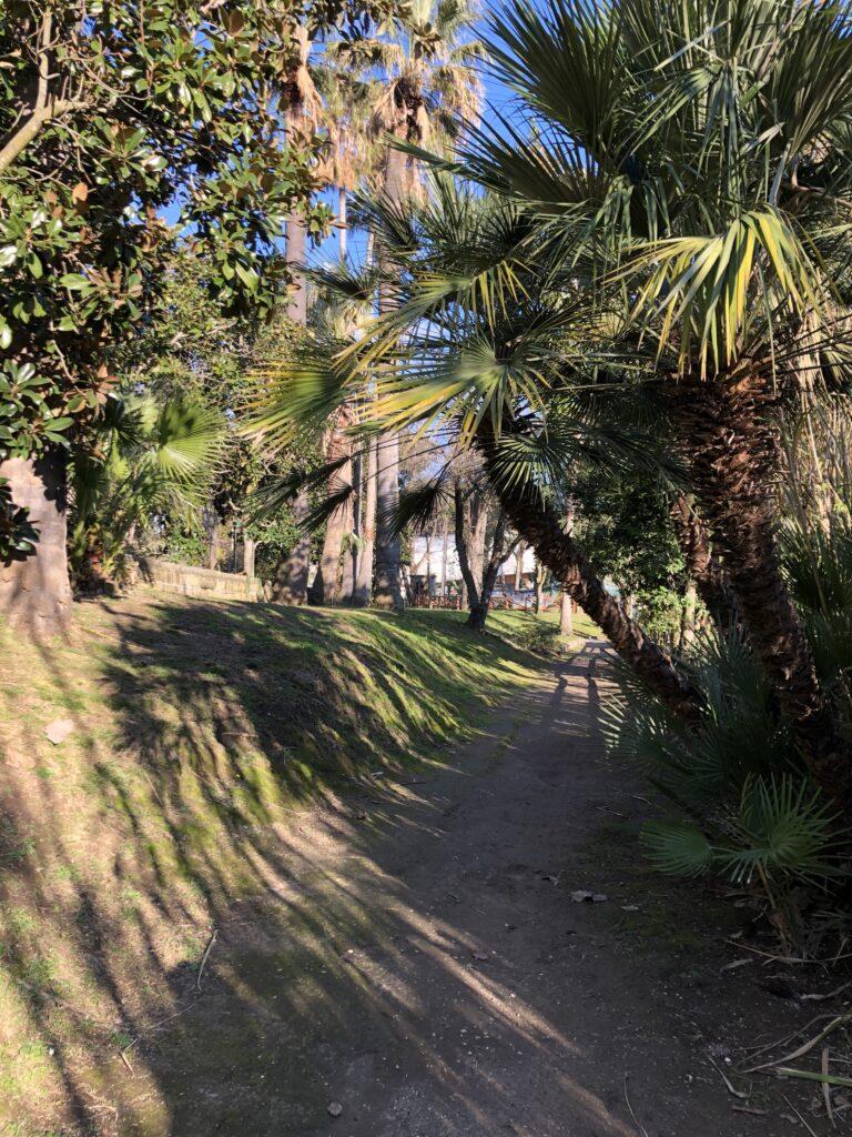 Allo Zoo di Napoli non solo animali ma passeggiate nel verde