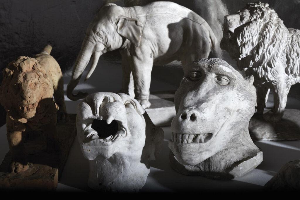 Inventario Varoli, della copia e dell'ombra al Museo Civico Luigi Varolidi Cotignola